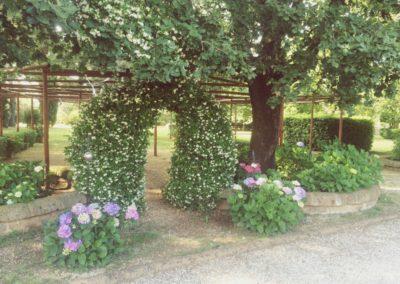 10_zia_cathys_giardino